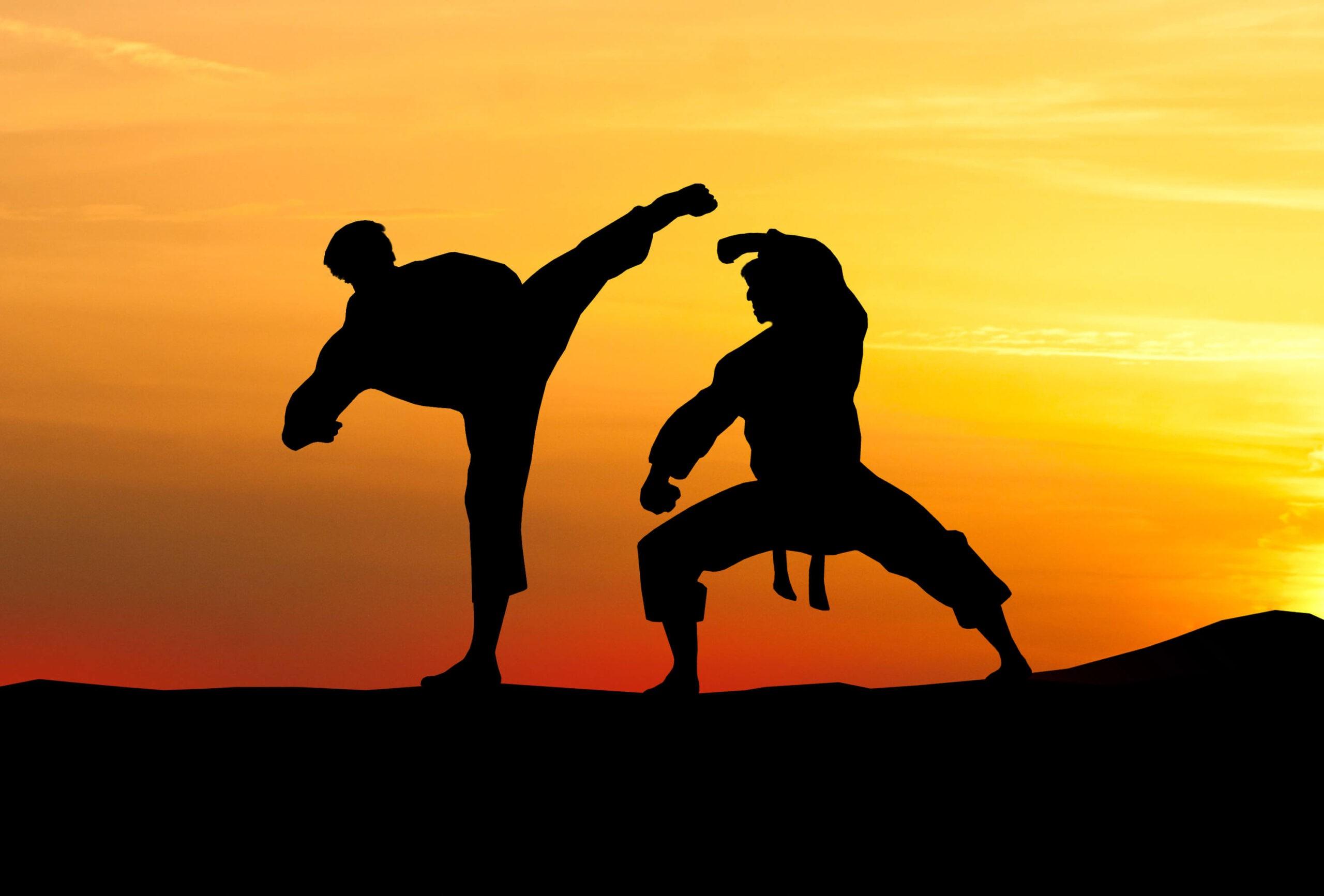 ביטוח אומנויות לחימה (1)