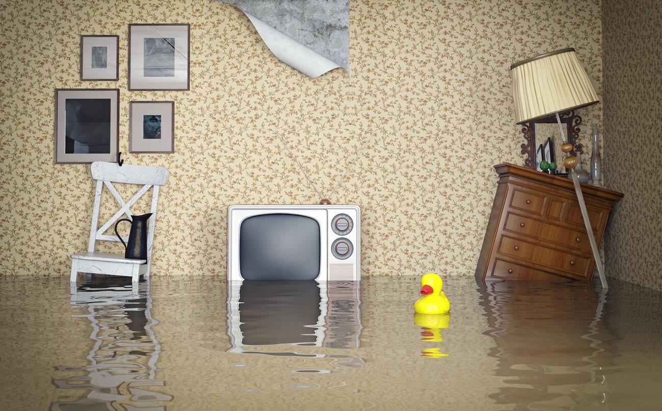 ביטוח צד ג לדירה